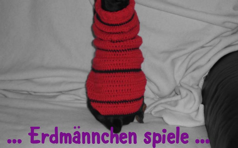 phoebie-hundepulli-knotenhexe-05